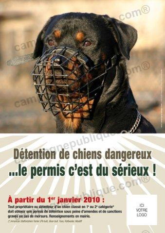 chiens dangereux photos